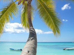 Guides to the Caribbean Islands